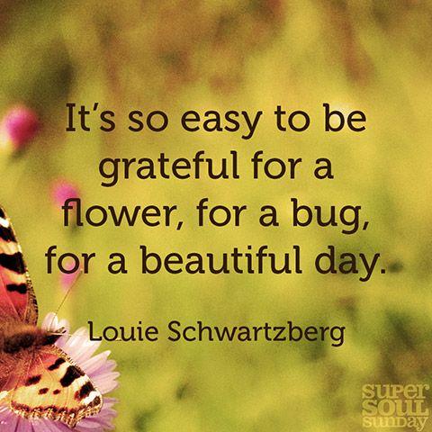 6 Thoughts on Awakening to Nature's Beauty | Beautiful ...