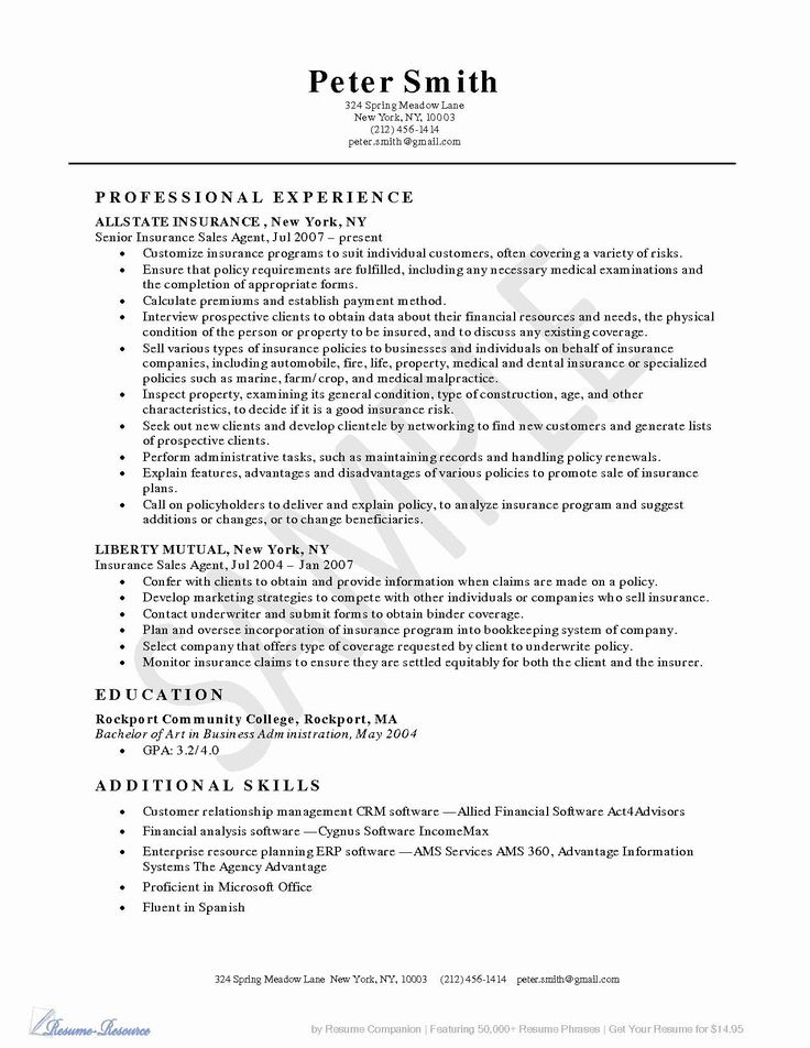 Insurance Agent Resume Examples New Ams Health Insurance