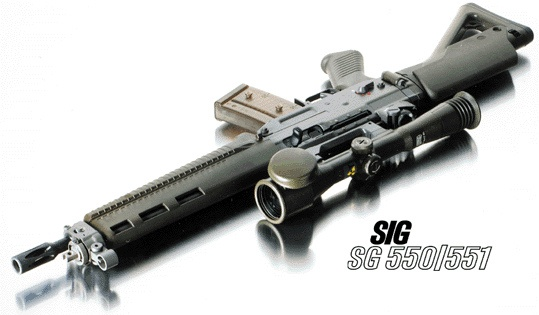 SIG SG 550                                                                                                                                                                                 Mehr Find our speedloader now!  http://www.amazon.com/shops/raeind