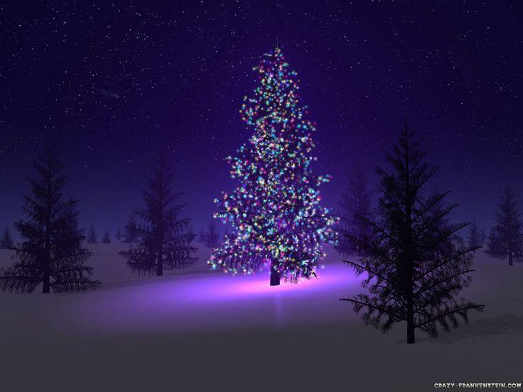 beautiful christmas trees - Google Search