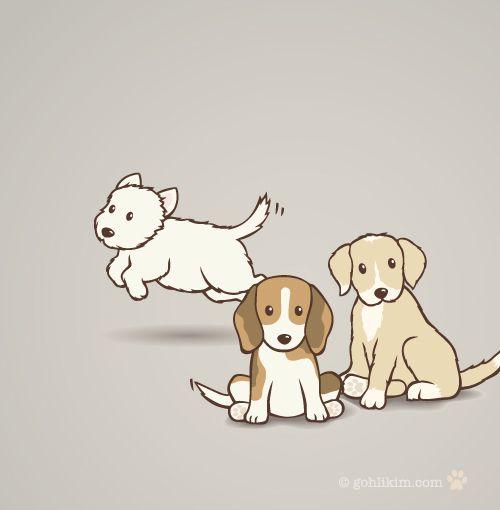 les 3 races de mes chiens : westies, beagle et basset :)