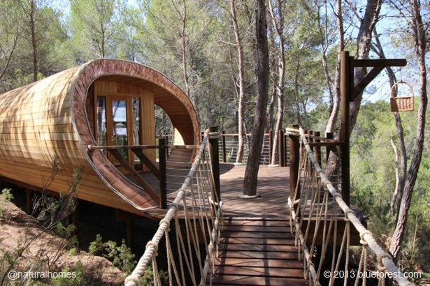 The shape of this house in the trees was inspired by the Fibonacci Spiral. That's the spiral found in plants and animals like the sunflower and the snail's shell. See more including video at www.naturalhomes.org/timeline/fibonacci-treehouse.htm