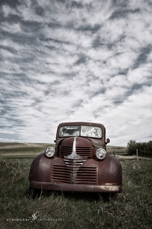 Old Dodge Truck by Carla Stringari Pudler