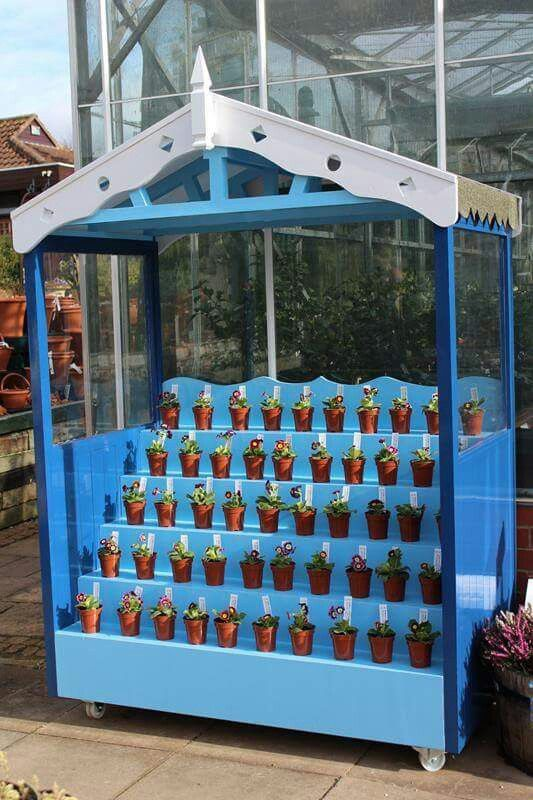 Auricula Theatre, Ashwood Nurseries