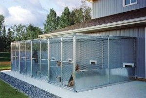 How To Build the Perfect Dog Kennel - Gun Dog Magazine...Great source of materials & information for the kennel