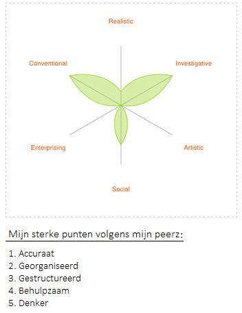 Wat mijn Peerz over mij zeggen: accuraat, georganiseerd, gestructureerd, behulpzaam en denker