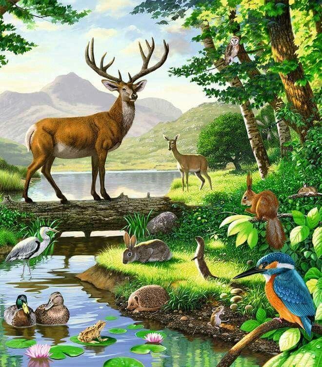 Pin By Mona Moni On Dipinti Deer Art Animal Paintings Wildlife Art
