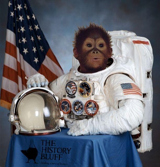 chimpanze astronaut - photo #5