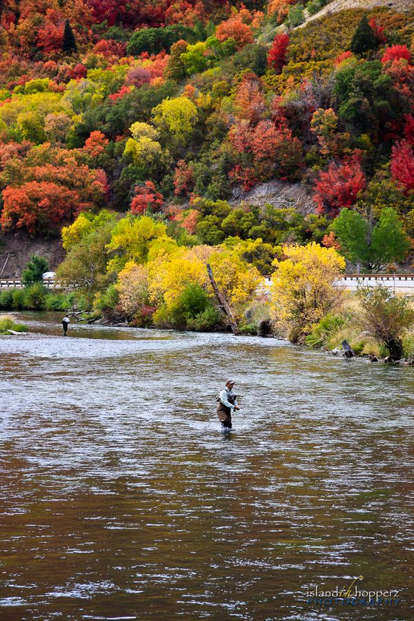 fall colors, I would go fishing surrounded by this scenery.