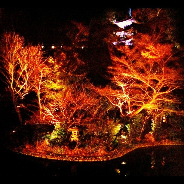 Japanese Garden At Night 204 best japanese garden's images on pinterest | japanese gardens