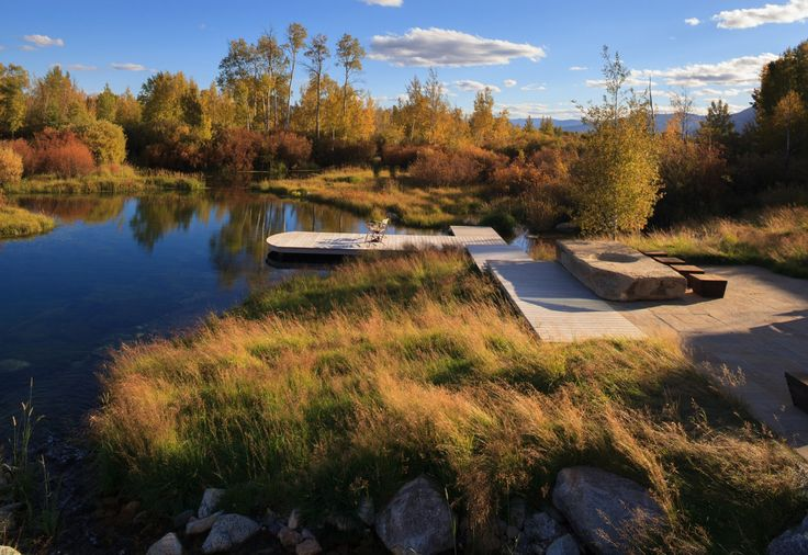 Literal ideal (wetlands, landing area, pond/swamp, meadowy) Verdone Landscape Architecture