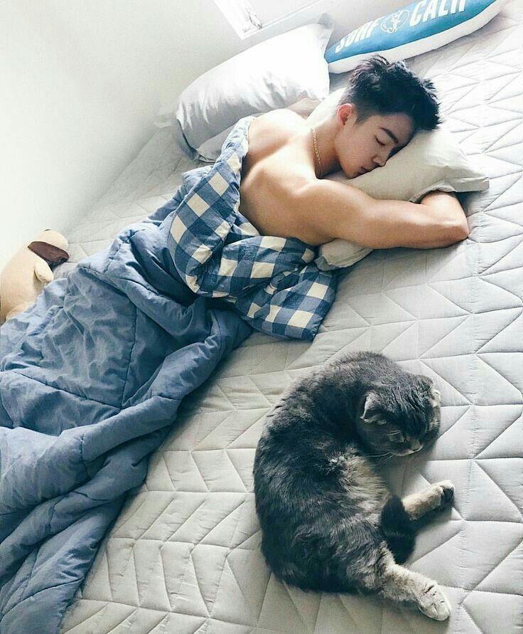 это просто на чем спят корейцы фото большая часть