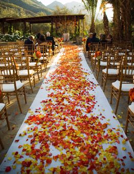 Bulk rose petals are a great way to add color and life to ANY wedding venue! Beautiful bi-color yellow/orange/red rose petals over an ivory runner really tie this fall wedding together beautifully!: Wedding Aisle, Wedding Ideas, Autumn Wedding, Fall Wedding Idea, Fall Wedding Flower, Orange Rose, Fall Wedding Decoration, Rose Petal