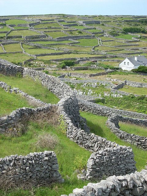 Aran Island of Innis Oirr (Inisheer), Ireland - these walls were built over the centuries to clear fields for farming.