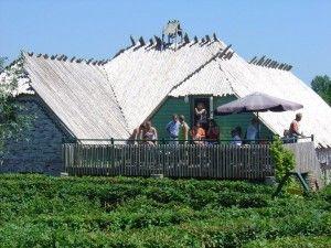 Het Victoriadoolhof is een groot doolhof van 8000 m² dat geplant is in haagbeuk en waarvan de paden (in totaal 3 km) volledig gestraat zijn.  Restaurant De Kreeke is een landelijk gelegen restaurant,  en 't Krekeltje heeft verschillende speeltuinen:reuze grote blokken om een fort mee te bouwen, 2 binnenspeeltuinen met een ballenbad, 3 glijbanen, klim– en klauterwerk, een wipplank, een huisje om gezinnetje te spelen met bedjes, een keuken,… en meer