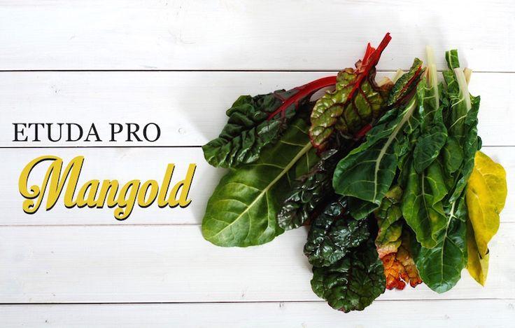 mangold recepty