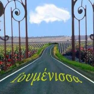 main road-.Goumenissa-Kilkis-Greece