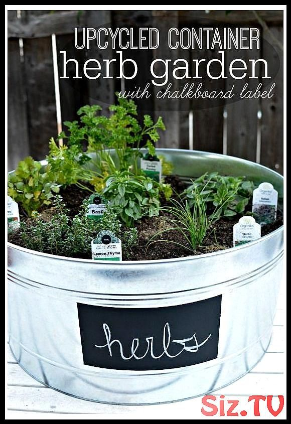 33 Best Container Herb Garden Combinations For Flavor Aroma Best Container Herb Combinati 33 B Container Herb Garden Diy Container Gardening Gardening For Kids