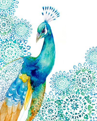 Peacock Art / PRINT / Turquoise and blue