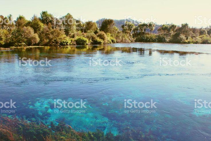 Te Waikoropupu Springs, Takaka, Golden Bay, New Zealand royalty-free stock photo