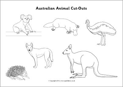 an analysis of the humans and fauna in australia Human-animal studies (has) is a rapidly growing interdisciplinary field that examines the complex and multidimensional relationships between humans and other animals.