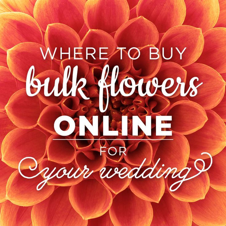 Budget Friendly Online Resources for Wholesale Flowers. Where to Buy Bulk Flowers Online for your wedding or other special event.