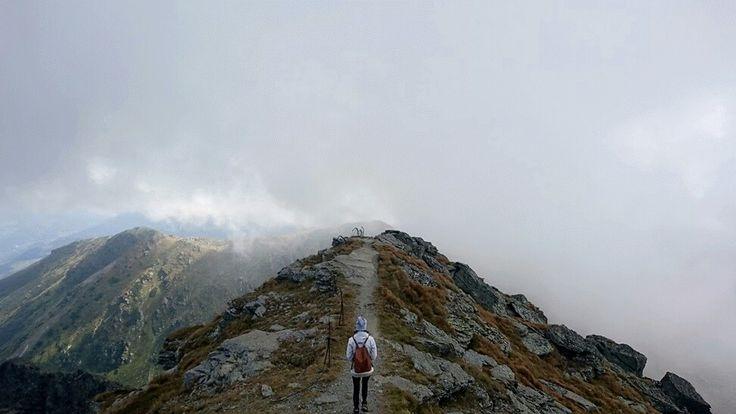 Pietrosu Peak, Mount Rodnei, Romania