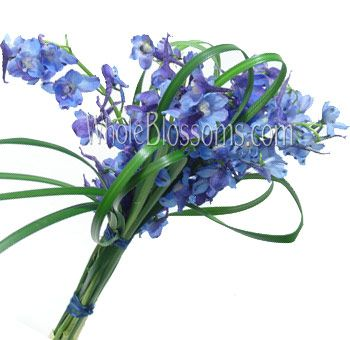 Hand died with Lily Grass. This one matches the bridal one somewhere on here. lovely  Blue Delphinium Bridesmaid Bouquet