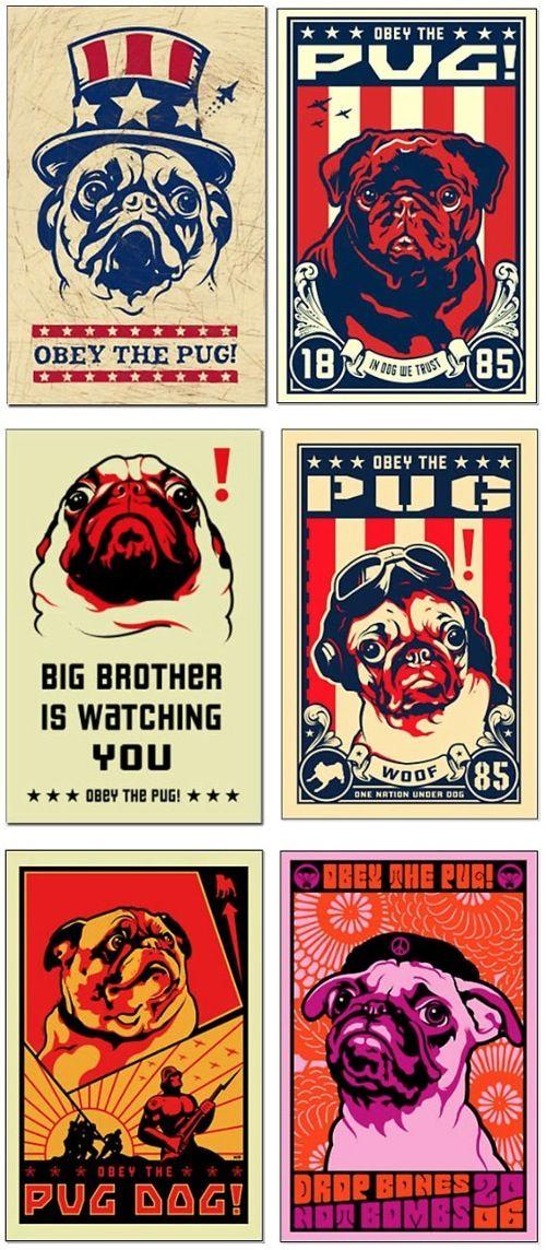 Pug Propaganda Poster Art by Kevin McCormick                                                                                                                                                                                 More