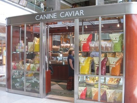 Canine Caviar is the first true holistic pet food and the only grain-free and alkaline based pet food diet in North America that is specifically designed to help reduce the risk of cancer and other health related conditions.  It is not the cure but it provides the ingredients for a holistic and healthy lifestyle pet plan. Canine Caviar, an easily digested formula, will quickly settle digestive upsets, reduce itching, scratching, shedding and hotspots. Visit a Global Pet Foods store for…