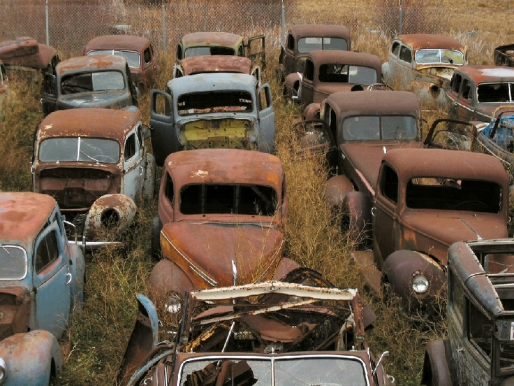 Amazing Rusty Finds searchlocated In a yard close to