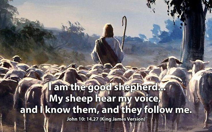 John 10:14 and 27 KJV!! | Kjv, The good shepherd, John 10 14