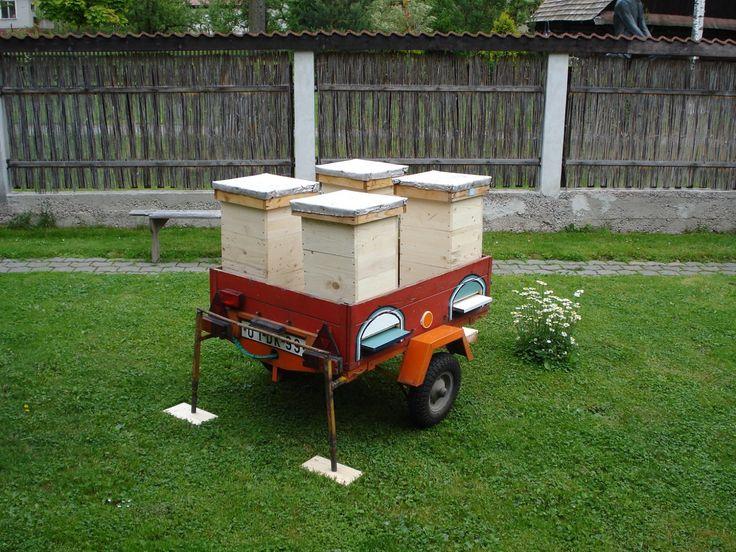 Minulý štvrtok bol u mňa priateľ, ktorý má včelstvá v lese asi desať kilometrov od mojej včelnice. Bol si požičať medomet. Túto sezónu zača...
