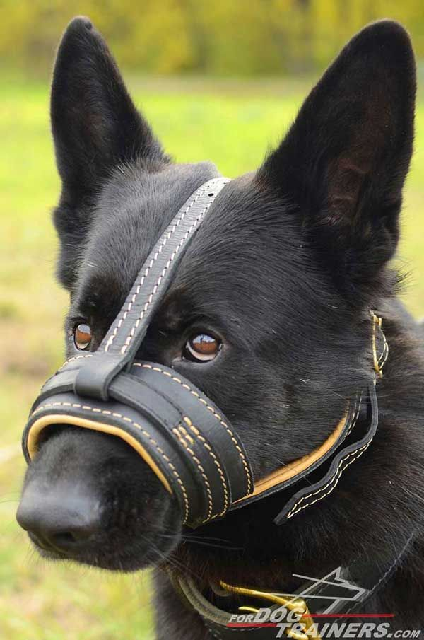 Loop-like Royal Nappa Padded #Leather #Dog #Muzzle - $79.00 | www.fordogtrainers.com