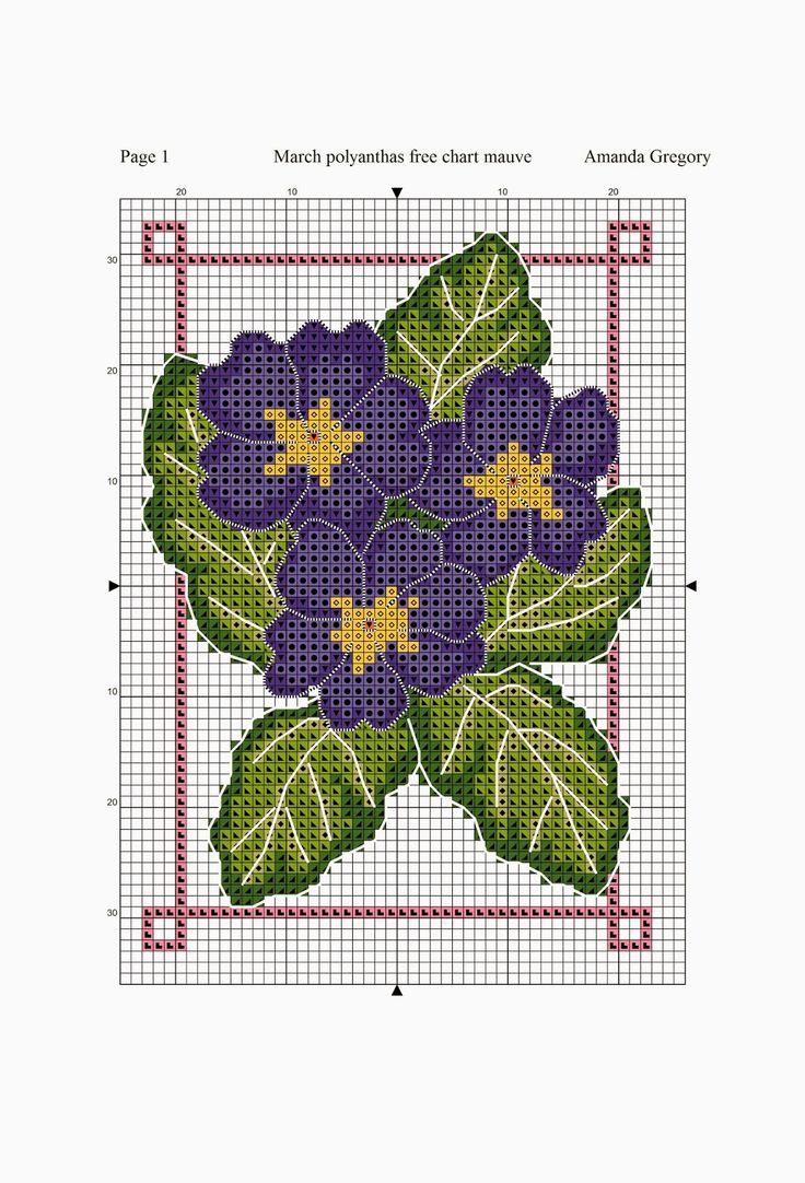 March free chart polyanthus pink and mauve | Amanda Gregory cross-stitch design