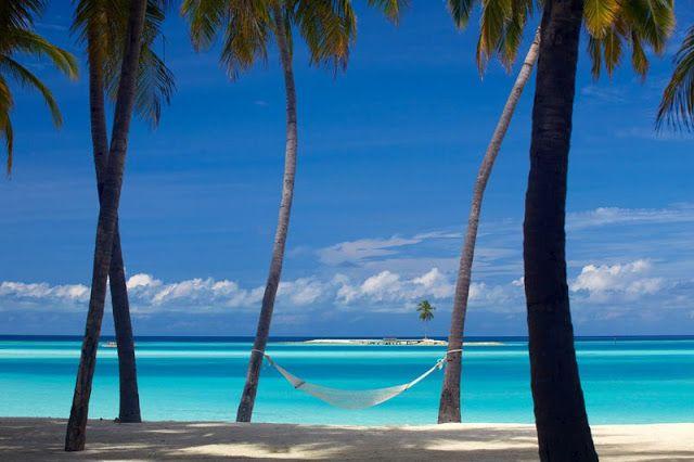 Eleito o melhor hotel do mundo em 2015. Gili Lankanfushi nas Maldivas. - Cultura | ChiadoNews