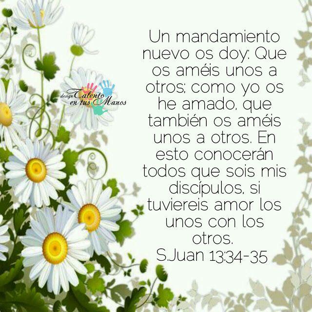 SAN JUAN 13:34-35