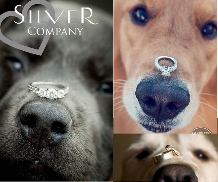 WE LOVE THESE. Silver Company- Stockists of fine sterling silver jewellery. <3 <3 #fortheloveofsilver