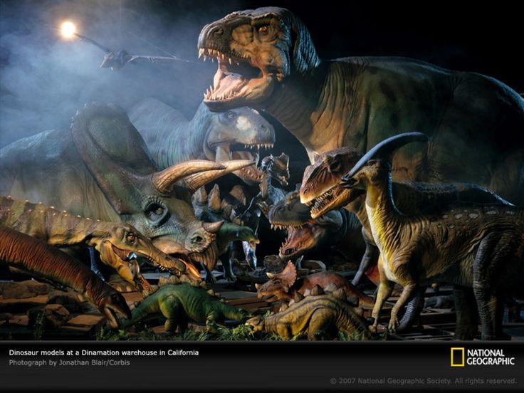 Real Dinosaur | ... dinosaur pics,dinosaur backgrounds,real dinosaur pictures,dinosaur
