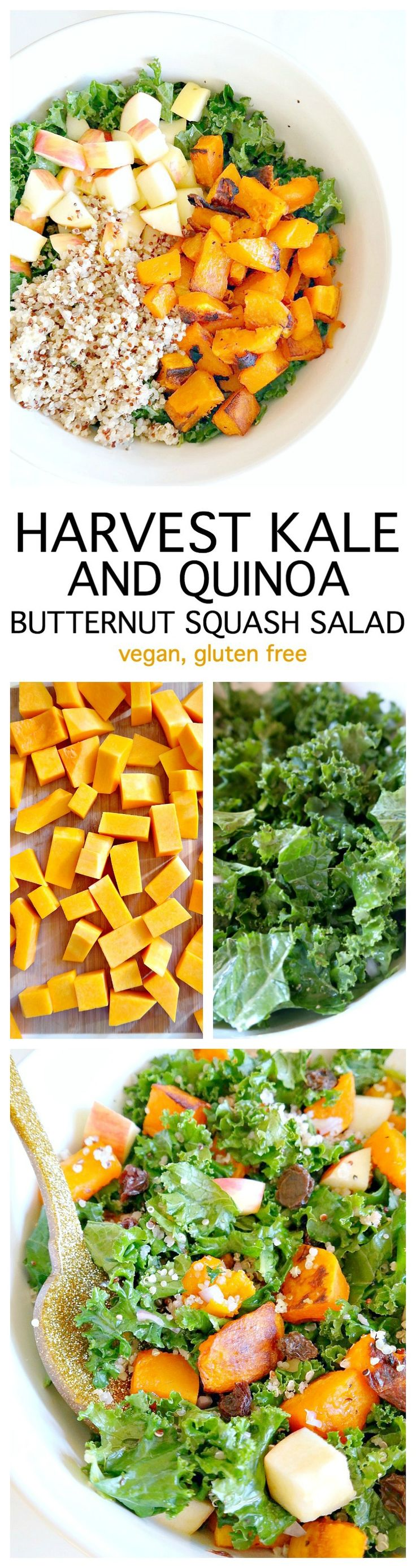 Harvest Kale and Quinoa Butternut Squash Salad. Vegan and Gluten Free with a Oil-Free Champagne Vinaigrette. Roasted butternut squash, crisp apple, nourishing quinoa, kale and raisins for a hint of sweetness. A lean, clean & green fall recipe that's perfe