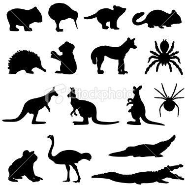 Australian animals silhouette set Royalty Free Stock Vector Art Illustration