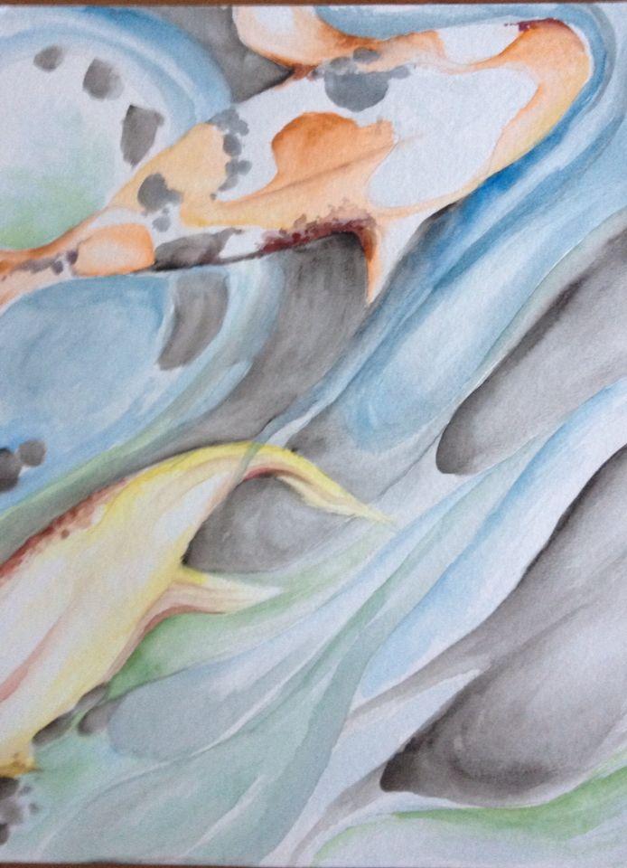 Watercolor coy