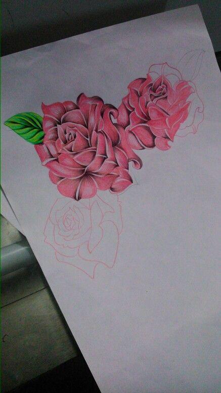 Rosas draw