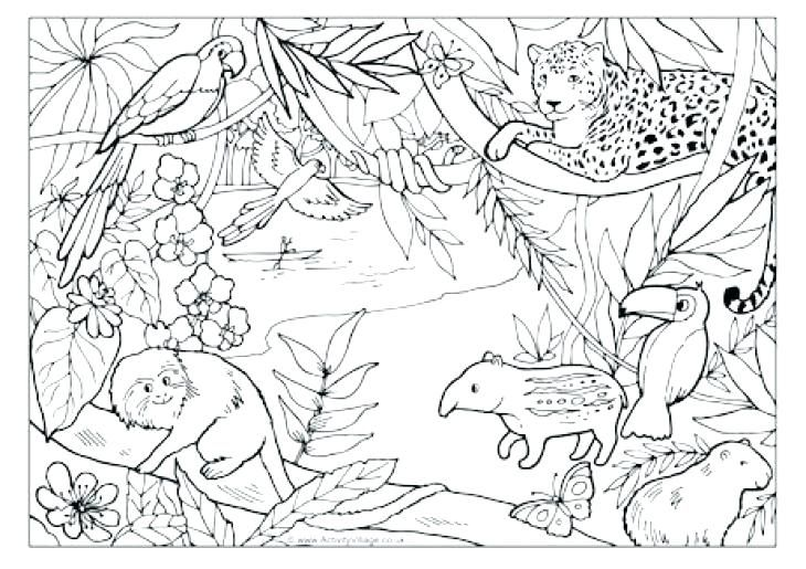 Real Animal Coloring Pages Jungle Coloring Pages And Marvelous