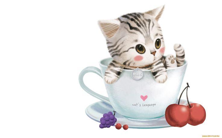 рисованные, животные, коты, чашка, котенок