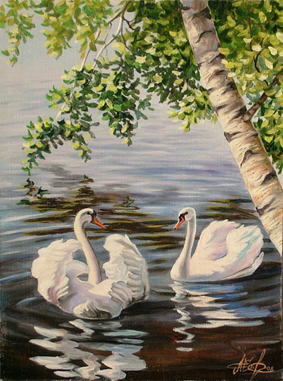 """Stately as princes the swans part the lilies and glide under the willows..."""
