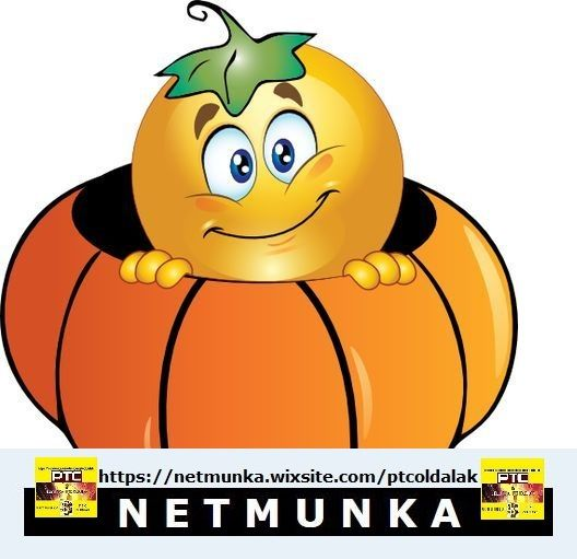 Netmunka - PTC oldalak
