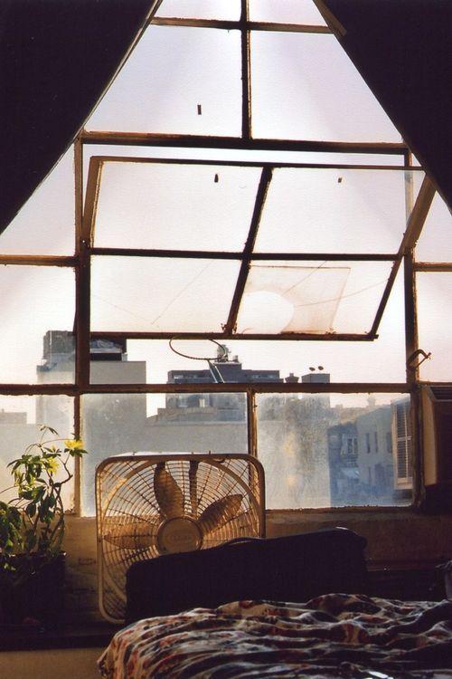 I love windows to the city. I am an urban squirrel.