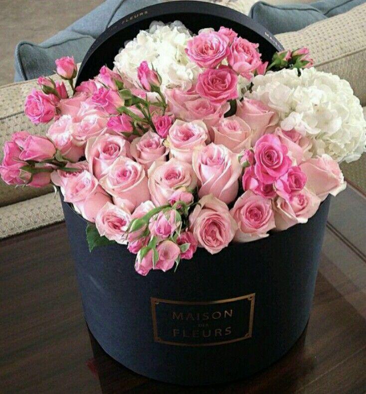Multiflora Roses and Hydrangea. I think, beautiful.