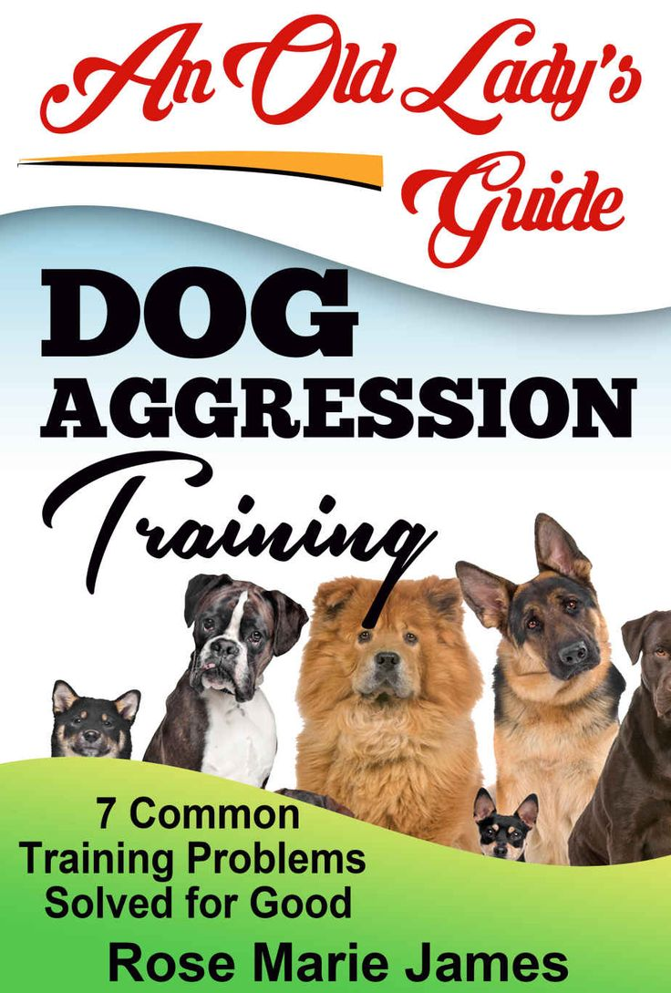 Amazon.com: Dog Aggression Training: 7 Common Training Problems Solved for Good (PetSafe Gentle Spray Anti-Bark Collar, Dog Obedience, Dog dominance aggression, Dog Psychology Book 1) eBook: Rose Marie James: Kindle Store